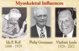 myoskeletal influences